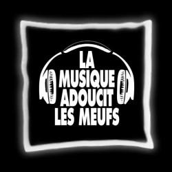 """Coussin """"La Musique Adoucit les Meufs"""""""