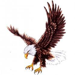 Tatoo temporaire aigle en vol