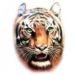 Tatoo temporaire tête de tigre réaliste couleur