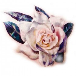 Tattoos temporaires pastel de rose